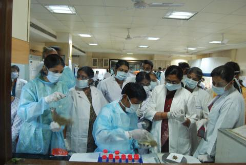 Learning how to extract the bacterium from soil samples