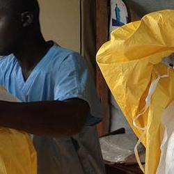 New model could help improve prediction of outbreaks of Ebola and Lassa fever