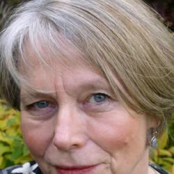 Professor Anne  Cooke