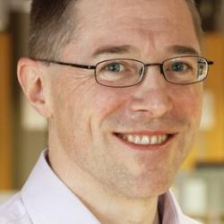 Professor David  Spring